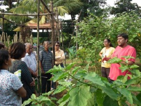 Workshop on Growing Organic Winter Vegetables